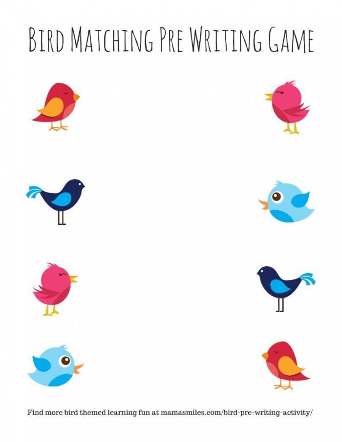 Bird Pre