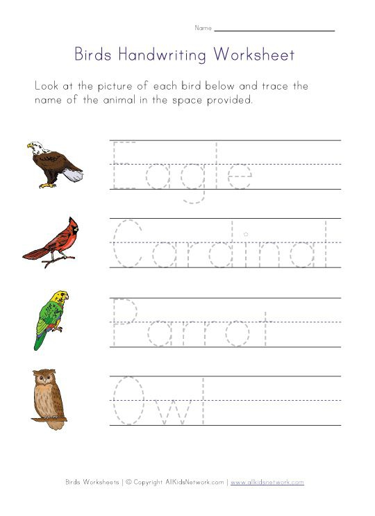 Birds Themed Handwriting Worksheet