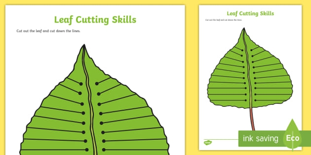 Leaf Cutting Skills Worksheet Teacher Made