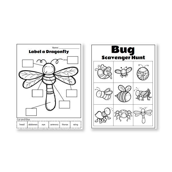 Printable Preschool Bug Activities For Kids