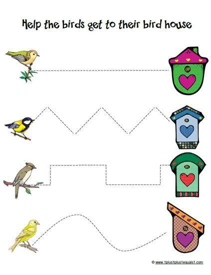 Spring Birds Thematic Unit Part