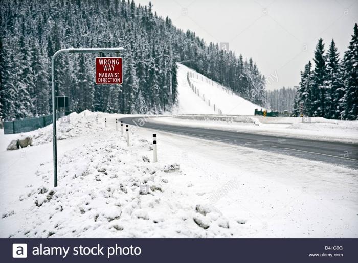 Wrong Way Sign On Trans