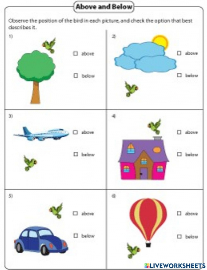 Above And Below Interactive Worksheet