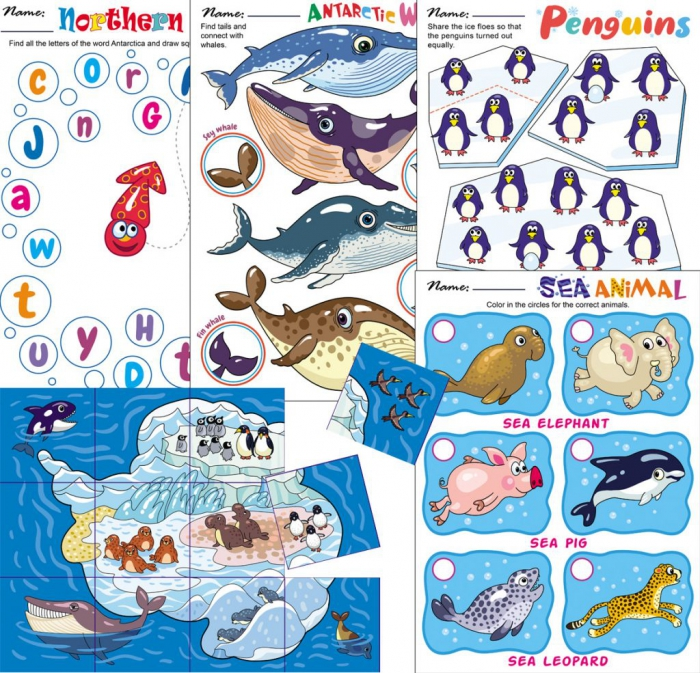 What Animal Is It? Whale Worksheets