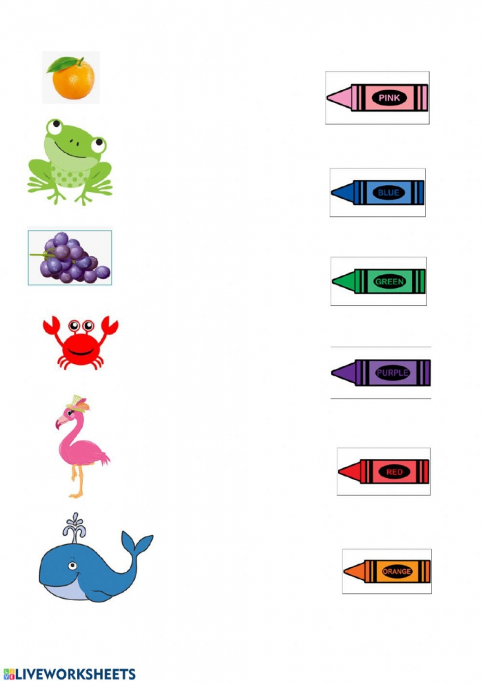 Colour Matching Interactive Worksheet