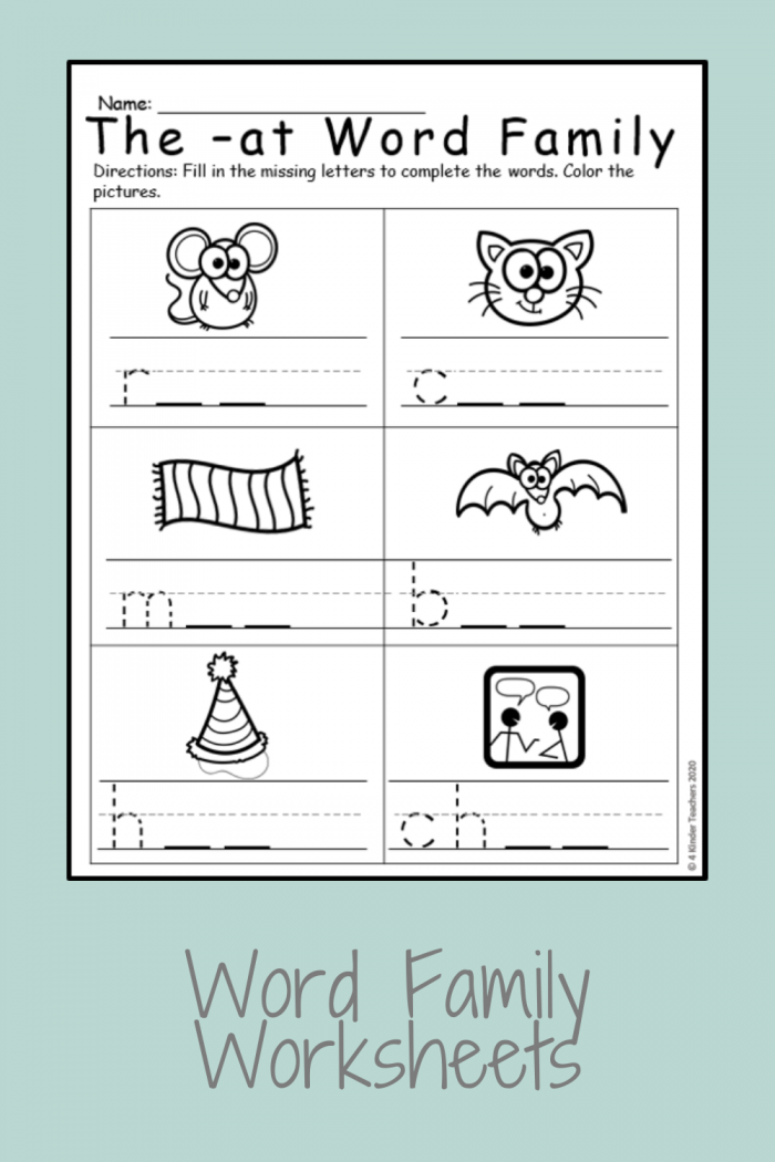 Differentiated Word Family Worksheets