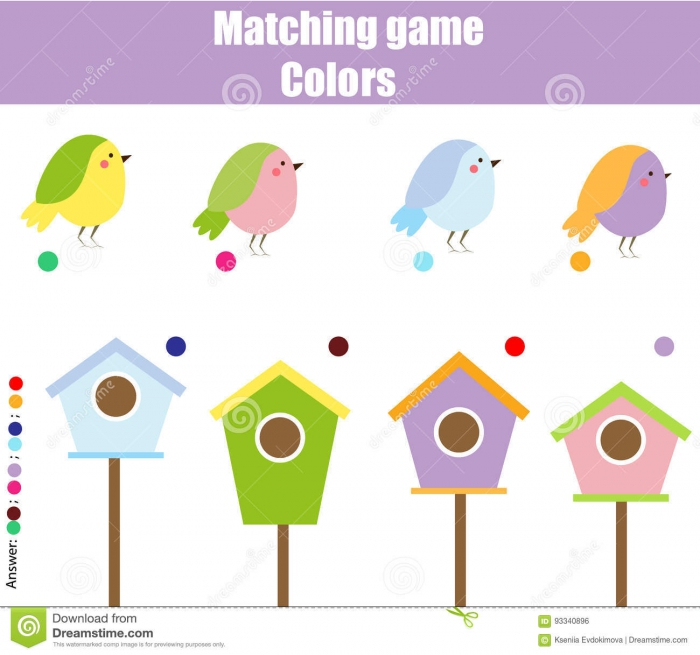 Picture Matching Worksheets – Birds Theme