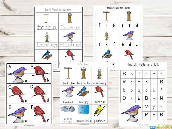 Birds Counting Practice Worksheets