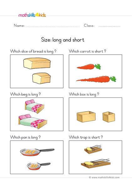 Size Worksheets For Preschool