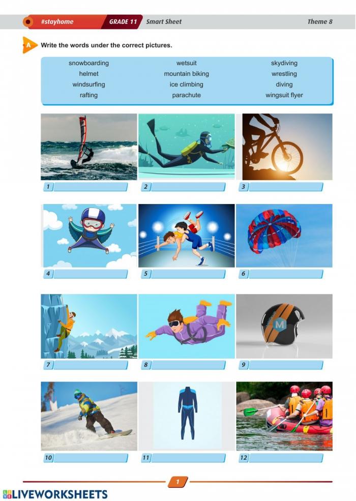 Sports Theme Same Worksheets