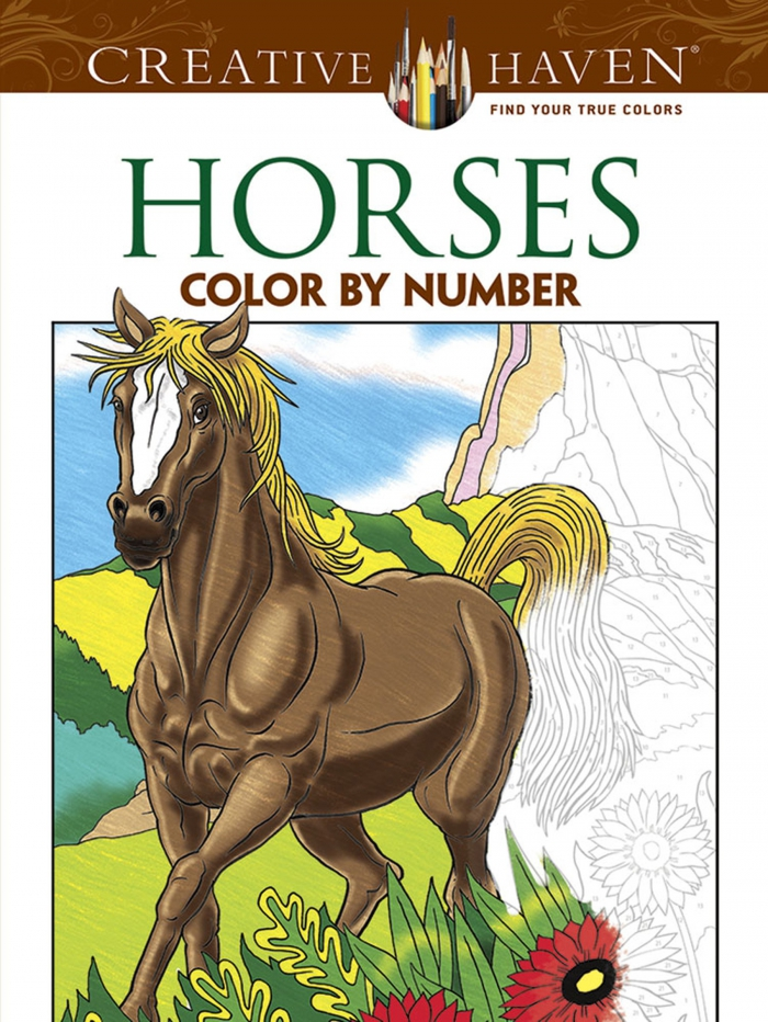Amazoncom Creative Haven Horses Color By Number Coloring Book