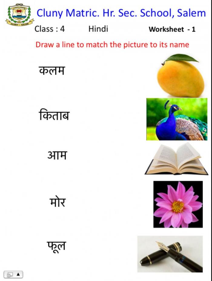 Class Hindi Worksheet