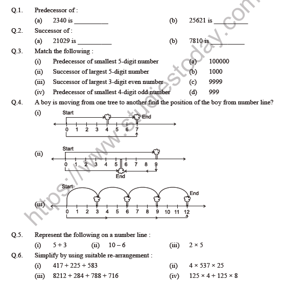 Class Maths Whole Numbers Worksheet