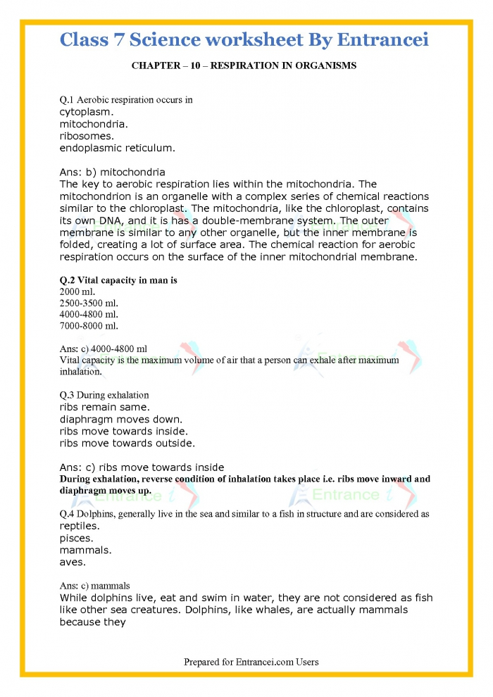 Class Science Worksheet With Detail Solutions For Chapter