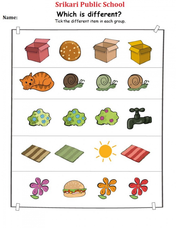 Different Worksheets