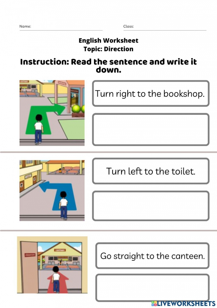 Direction Special Education Year Worksheet