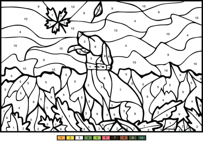 Dog Color By Number Coloring Page
