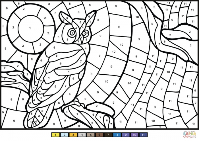 Owl Color By Numbers