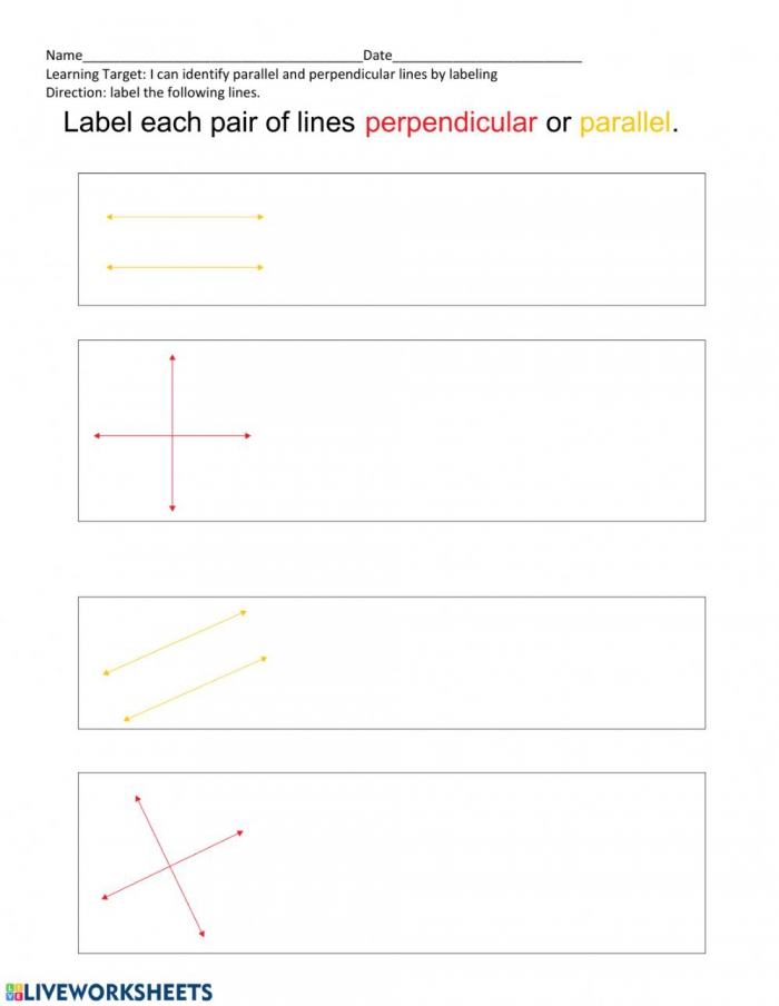 Parallel And Perpendicular Lines Worksheet