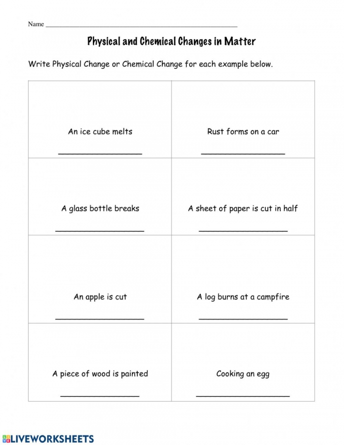 Physical And Chemical Changes Interactive Worksheet