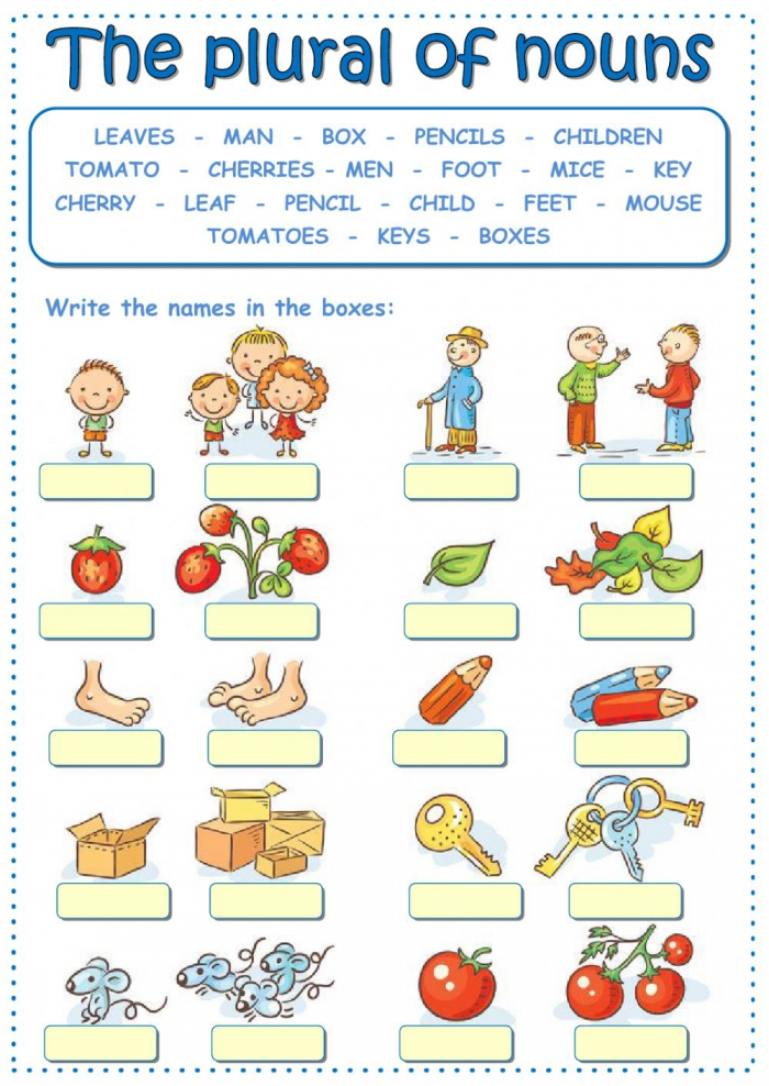 The Plural Of Nouns Worksheet