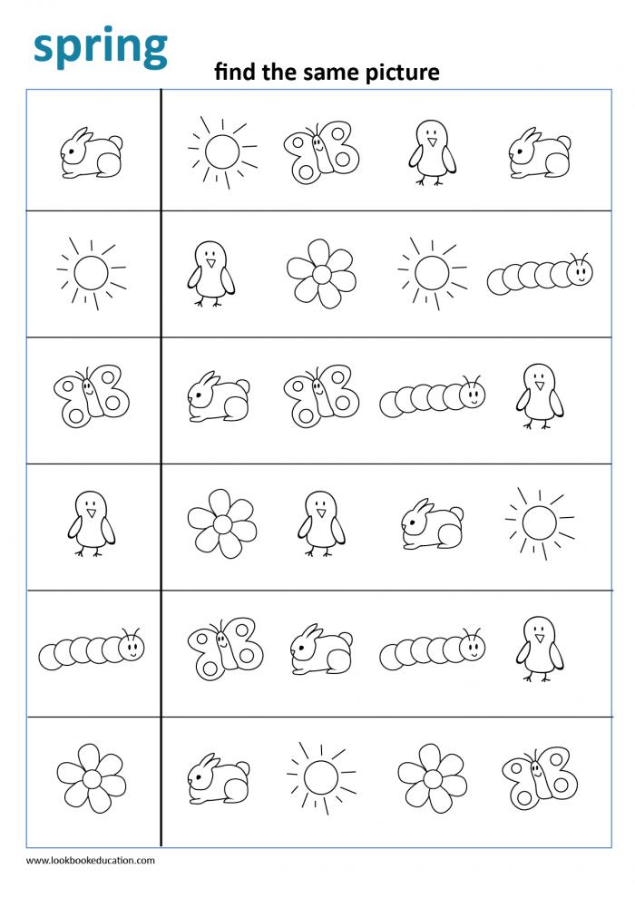Worksheet Find The Same Picture Spring