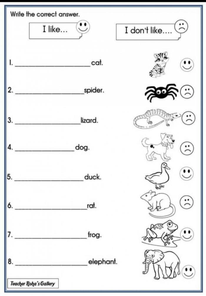 Animals Year Worksheet