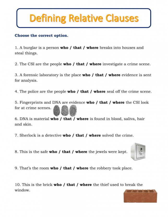 Defining Relative Clauses Exercise