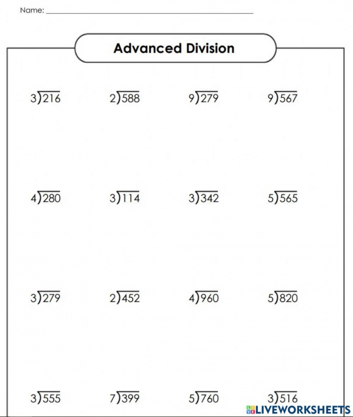 Division With No Remainder Worksheet