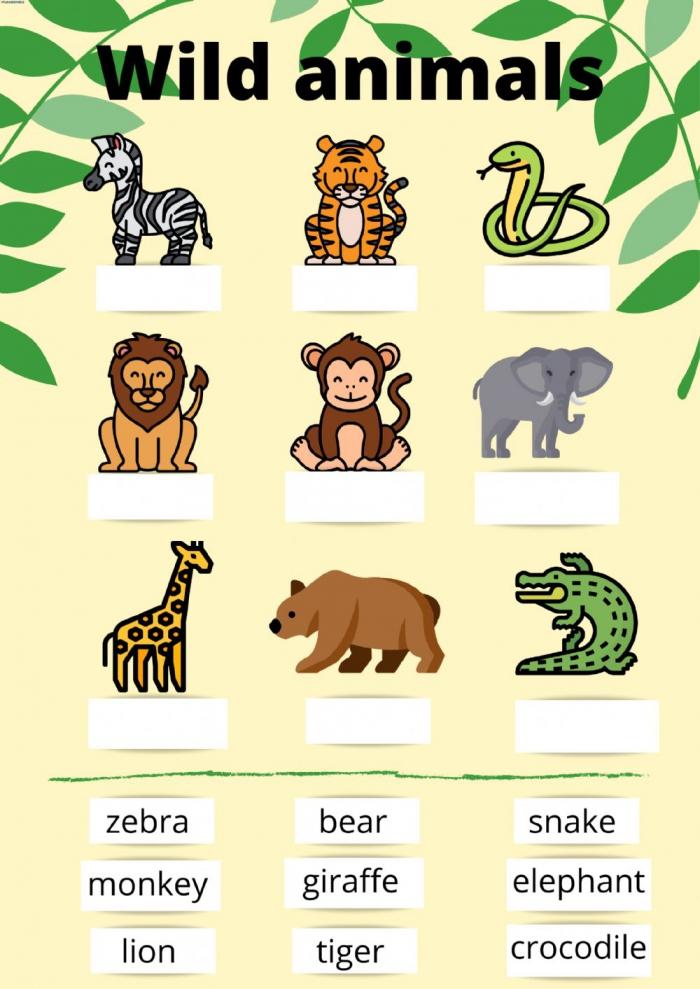 Drag And Drop Wild Animals Worksheet