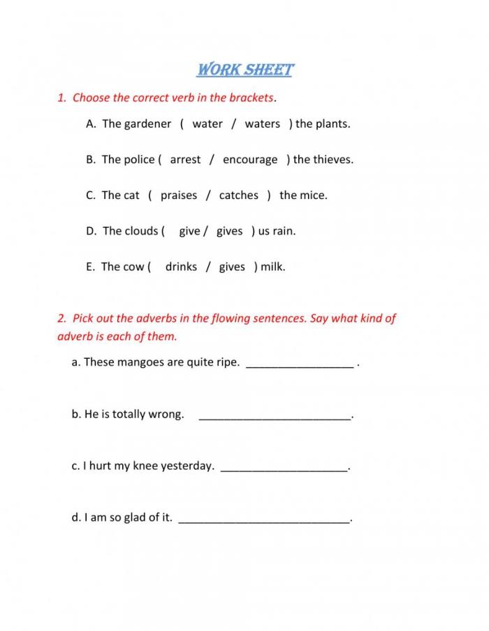 Grammar Online Exercise For