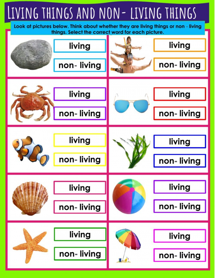 Living Things And Non