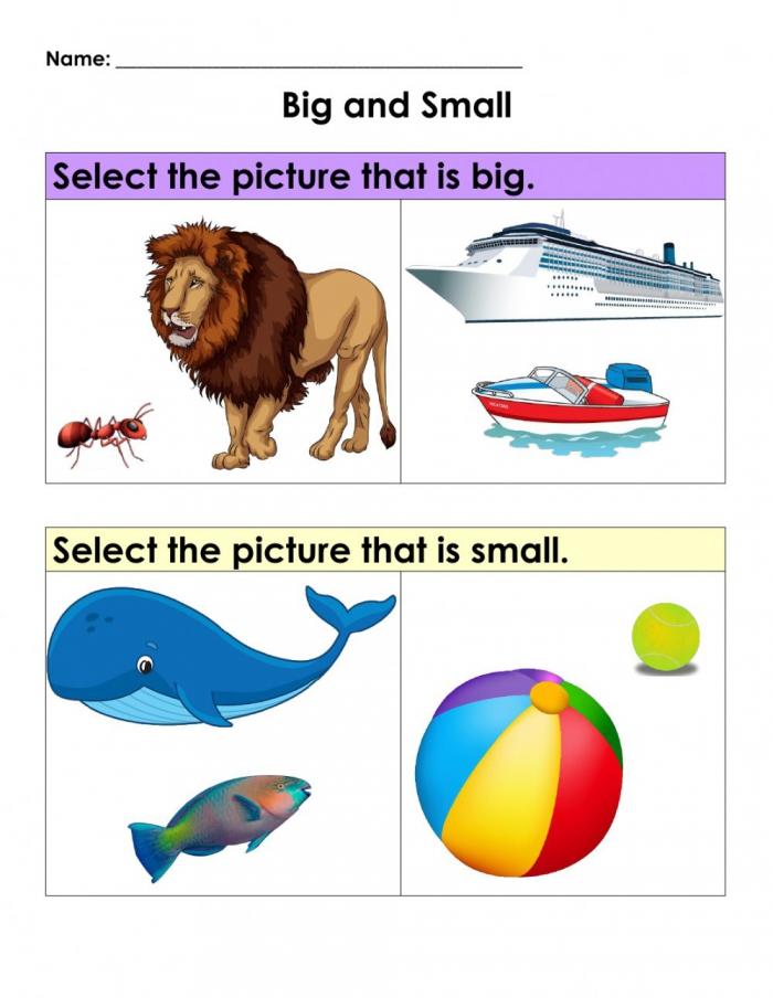 Maths Concepts Big Vs Small Worksheet
