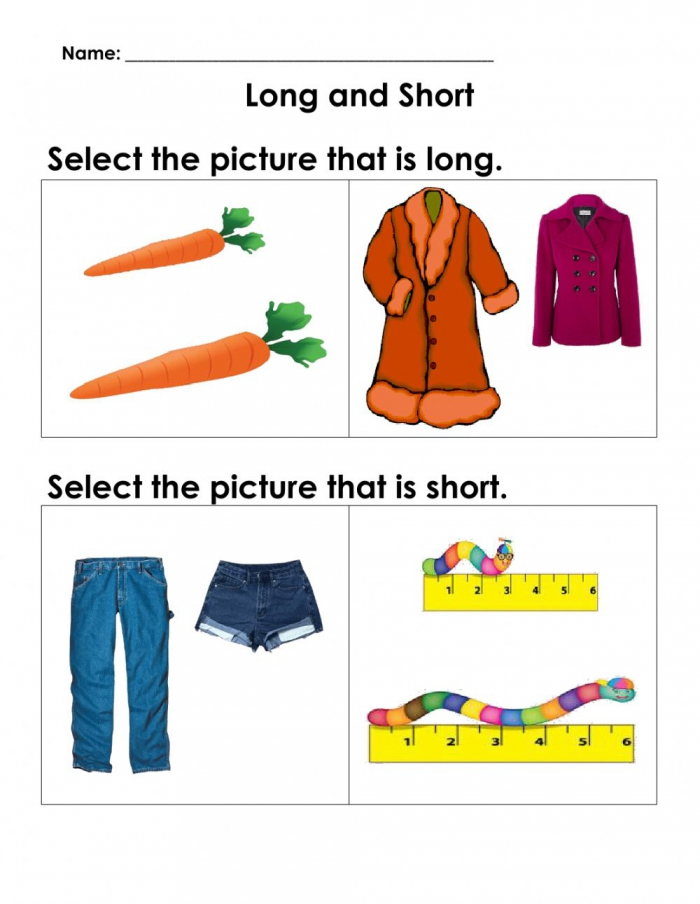 Maths Concepts Long And Short Worksheet