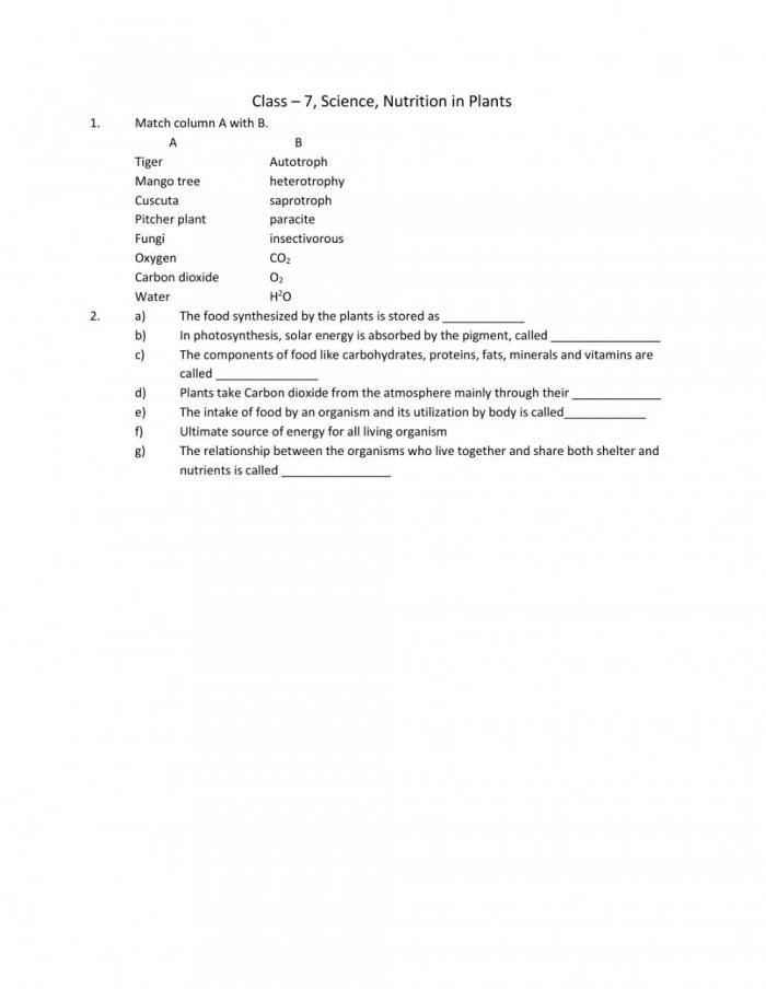 Nutrition In Plants Worksheet