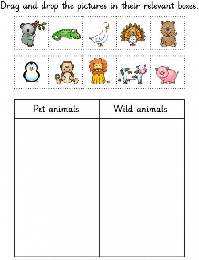 Pet And Wild Animals Worksheet