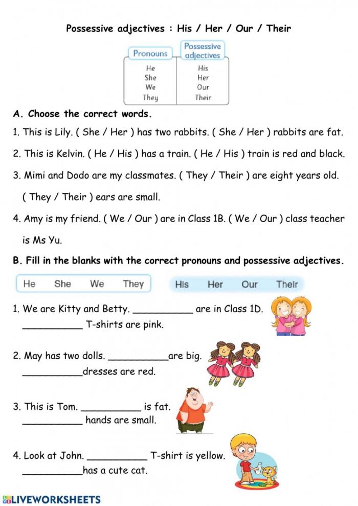 Pronouns And Pronoun Adjectives Worksheet