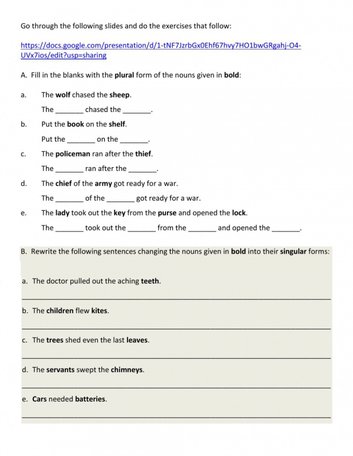 Singular And Plural Nouns Exercise For Grade