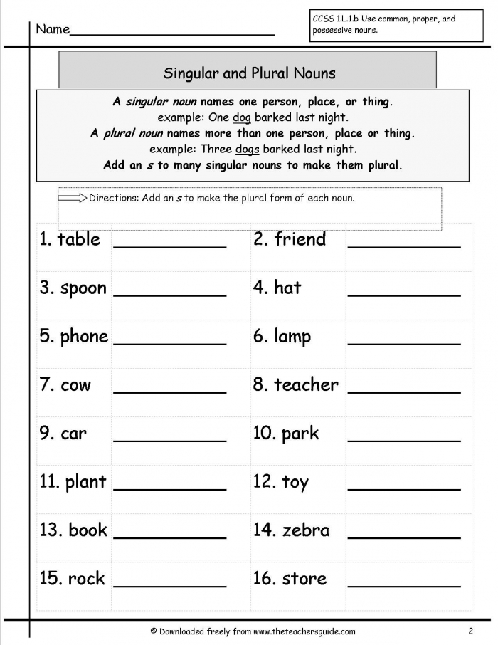 Singular And Plural Nouns Worksheets From The Teachers Guide