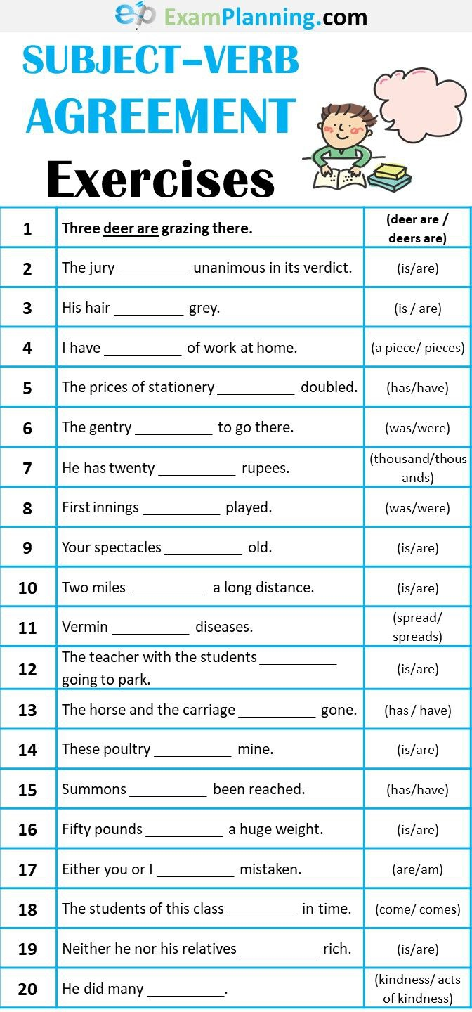 Subject Verb Agreement Exercise