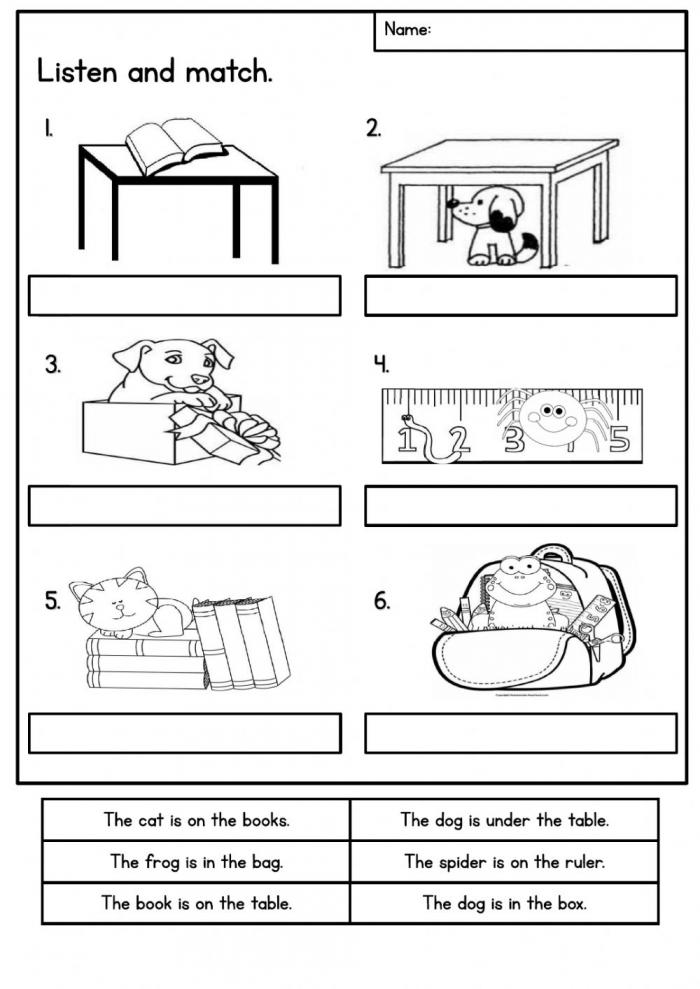Unit Pet Show Year Worksheet