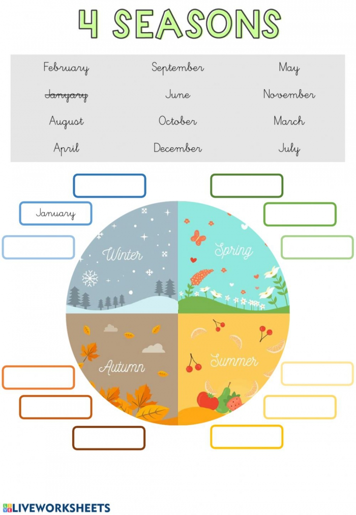 Months And Seasons Interactive Worksheet