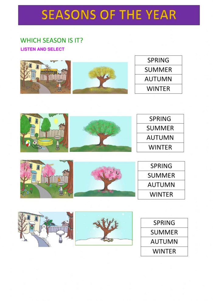 Seasons Of The Year Online Exercise